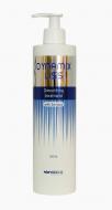 Разглаживающее средство Brelil Dynamix Liss Smoothing Treatment 500 мл: фото